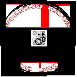 Phuong Dang Vo Dao - logo - yin yang