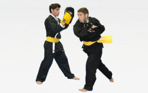 Style moderner - combat libre phuong dang vo dao